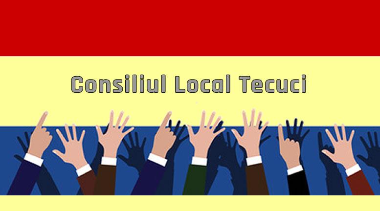 Consiliul Local Tecuci - 2017