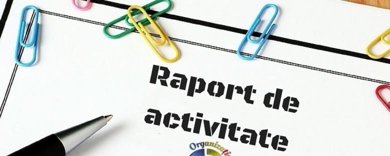 rapoarte de activitate